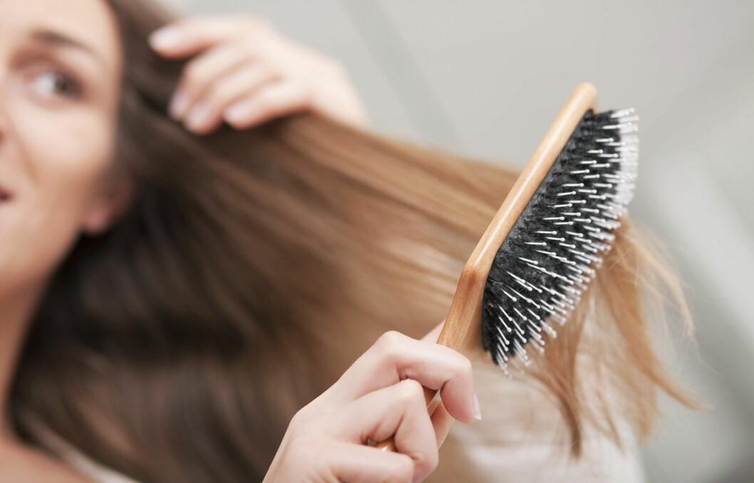 HÅRBØRSTE: En generelt god regel er å bytte ut hårbørsten hvert fjerde år. Med tiden vil det samle seg mye produktrester og bakterier fra både håret og hårsekkene. Foto: Fotolia