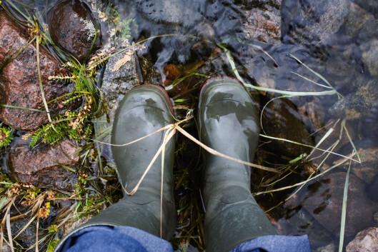 BESKYTTER: Høye støvler med buksen godt trykket ned i, er lurt når du beveger deg i områder. Foto: Scanpix