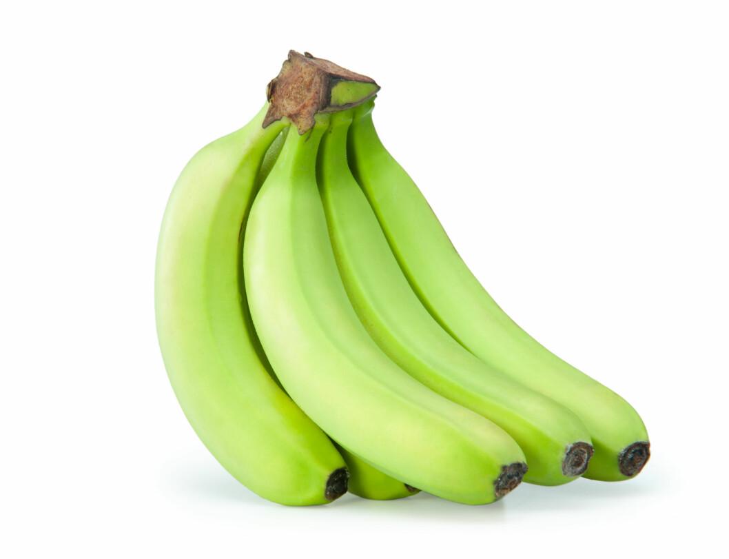 GRØNN: Den mer grønnlige bananen, altså den som ikke er helt moden, har en høyere andel stivelse og såkalt resistent stivelse (som fungerer som fiber i tarmen), men en lavere andel sukker enn den mer modne bananen.  Foto: kurtov - Fotolia
