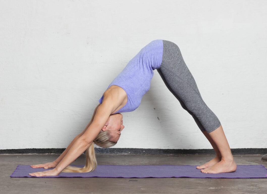 7: Pust ut, hodet slippes ned først, aktiver magen, rull over tærne og press rumpa opp mot taket for å komme inn i nedadgående hundestilling. Vri lårene innover, press hendene ned gjennom tommelfinger og pekefinger og vri triceps bakover for å åpne ryggen. Trekk magen opp og se inn mot navlen.  Ta 5 langsomme og jevne pust. På slutten av siste utpust, se fremover og bring skuldrene fremover, bøy knærne og press hoftene tilbake som en forberedelse til å gå til fremre del av matten. Pust inn og gå eller hopp lett fremover mot hendene. Forsett å se frem og forleng ryggraden på innpust. Pust ut og la overkroppen synke inn mot bena. Slapp av i nakken. Pust inn og kom helt opp i stående stilling med armene strukket opp mot himmelen. Se mot tomlene. Pust ut og slipp armene ned langs kroppen til utgangsposisjonen.   Foto: Ida Bjørvik
