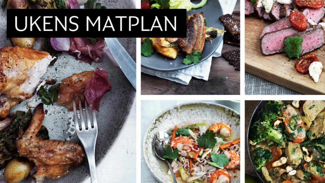 <strong>SPENNENDE:</strong> Hva med stekt salat, bakte tomater, syltet løk eller en herlig omelett med flesk og fløte. Denne uken bød på disse oppskriftene! Foto: All Over Press