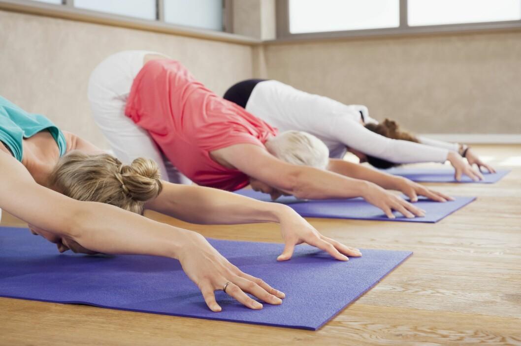 LITE SVETTTING: Yoga alene vil dessverre ikke kunne gjøre deg slank, siden det har liten effekt på kondisjonen. Foto: Mito Images/REX/All Over Press