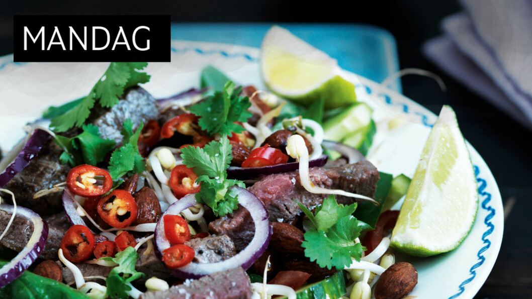 <strong>SALAT SOM METTER:</strong> De herlige asiatiske salatene er både supergode og friske samtidig som de metter. Anbefales! Foto: All Over Press