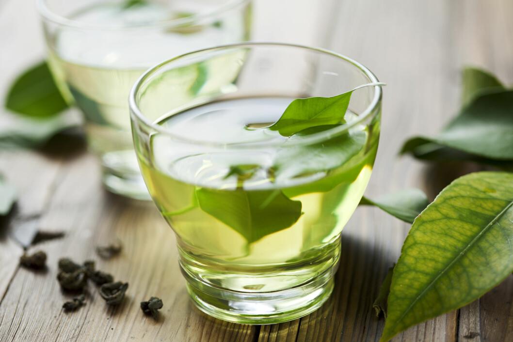 <strong>GRØNN TE GIR VEKTTAP:</strong> Flere studier har vist at katekinene, som er en type antioksidanter, i grønn te kan føre til vekttap.  Foto: Liv Friis-larsen - Fotolia