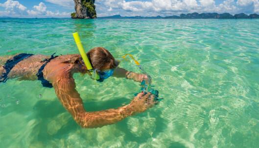 Egypt kan skilte med noen av vernes flotteste snorkle- og dykkermuligheter. Foto: NTB Scanpix