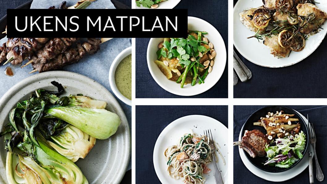 DEILIGE RETTER: Hva med en god vegetarrett, deilige oksespyd eller en lettvint pastaoppskrift? Foto: All Over Press