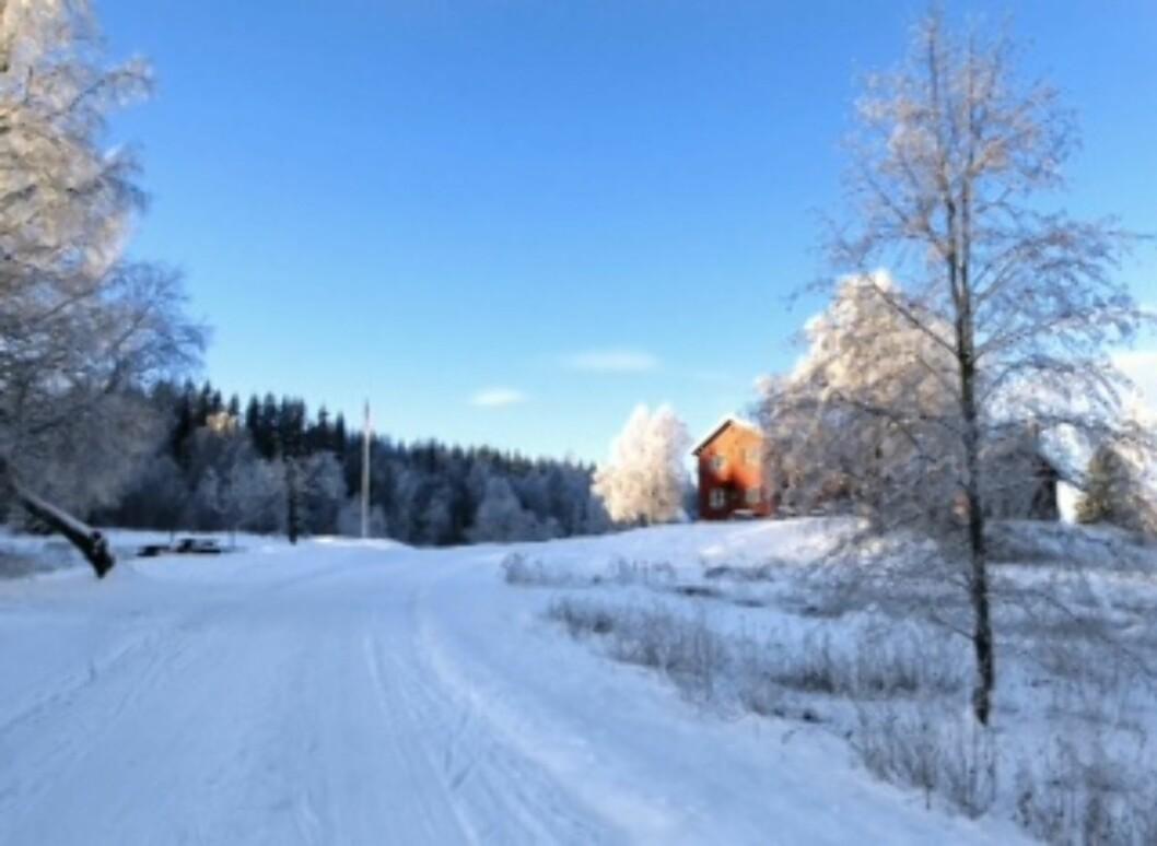 NYDELIGE FORHOLD: I samarbeid med Holmenkollen Skifestival arrangeres KKskimila, der deltakerne får teste ut de flotte løypene fra Sognsvann og opp mot Frognerseteren og Holmenkollbakken.
