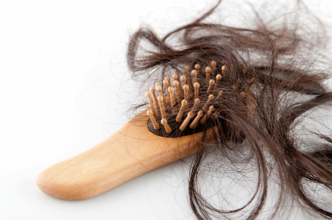 SER BØRSTEN DIN SLIK UT? Det er ikke så unormalt å miste mye hår i enkelte perioder - det kan imidlertid være lurt å undersøke det nærmere hvis det vedvarer.  Foto: szefei wong / Alamy/All Over Press