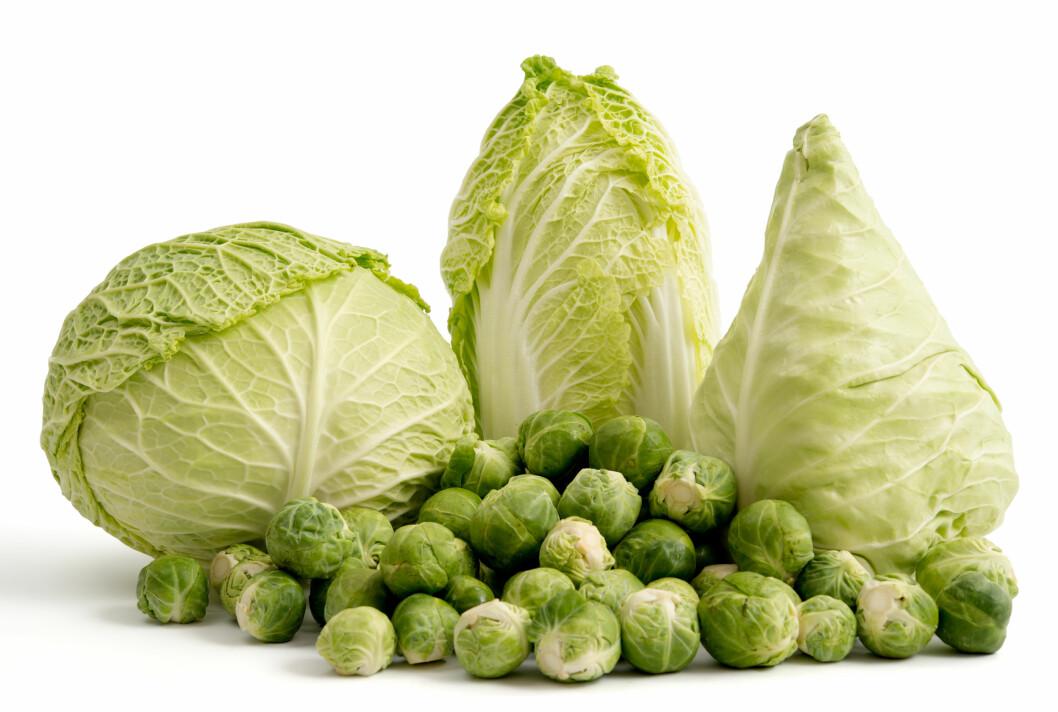 LITE KALORIER: Alle kålsortene er næringstette, men inneholder svært lite kalorier.  Foto: emuck - Fotolia