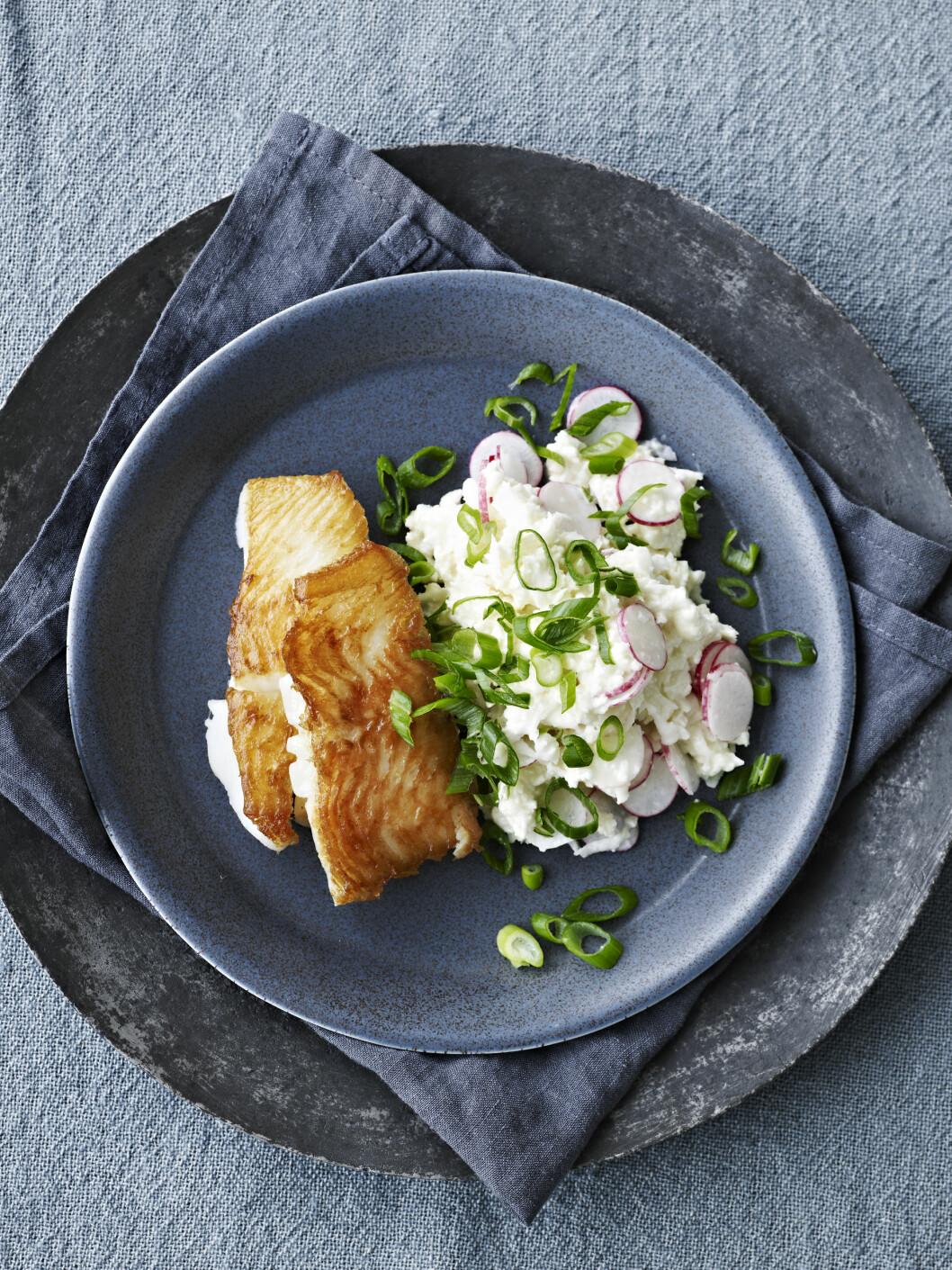 KVEITE: Prøv denne deilige fiskeretten med herlig salat Foto: All Over Press