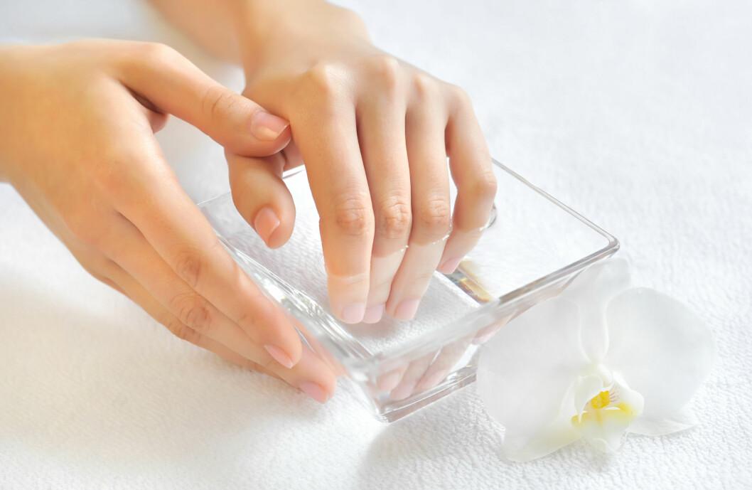 ISVANN: Sørg for å ha en bolle full av vann og godt med isbiter allerede før du begynner å lakke neglene. Siden neglelakk tørker fortere ved lave temperaturer, vil isvanne gjøre at lakken tørker på to-tre minutter. Foto: nmelnychuk - Fotolia