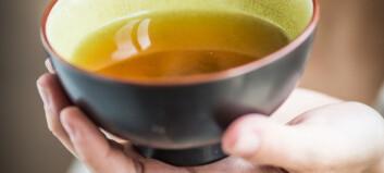 Derfor bør du drikke te hver dag