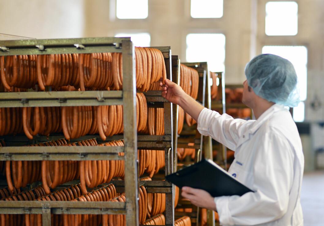 KONTROLL: Matvareprodusenter må selv ta ansvar for å produsere trygg mat, men de er underlagt et strengt regelverk med krav til renholdsprøver, produktprøver og miljøprøver. Foto: industrieblick - Fotolia