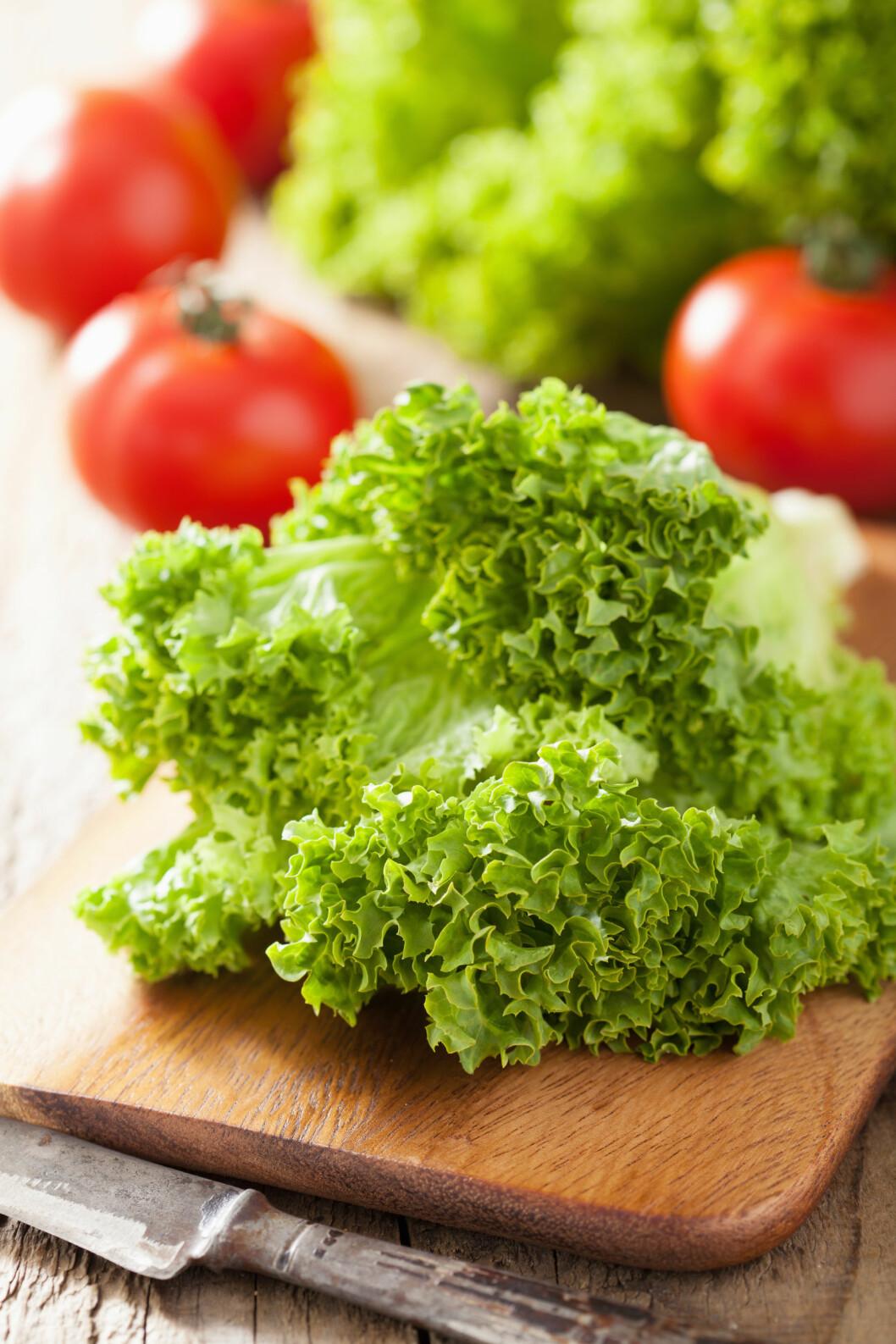 DROPP KNIVEN: Noen typer salat bør du mye heller rive opp.  Foto: dusk - Fotolia