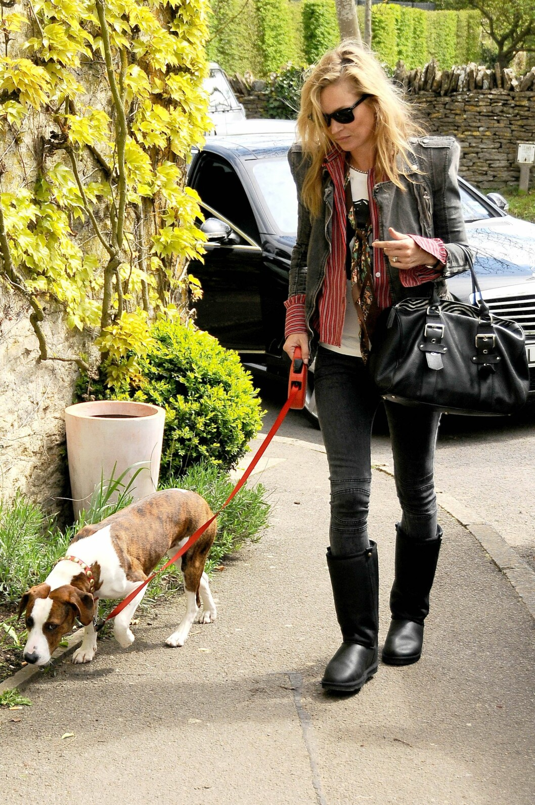 Kate Moss with dog Archie *** Local Caption *** 10.1708247g Foto: REX/Joan Wakeham/All Over Press