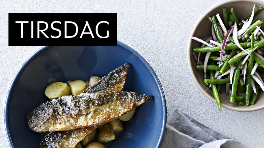 DEILIG FISK: Rugmelsstekt makrell er kjempegodt! Foto: All Over Press
