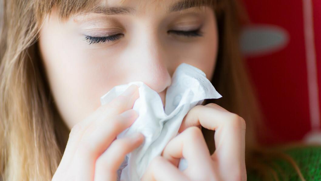 SNUFS: Skyldes det allergi, forkjølelse eller noe helt annet?  Foto: All Over Press