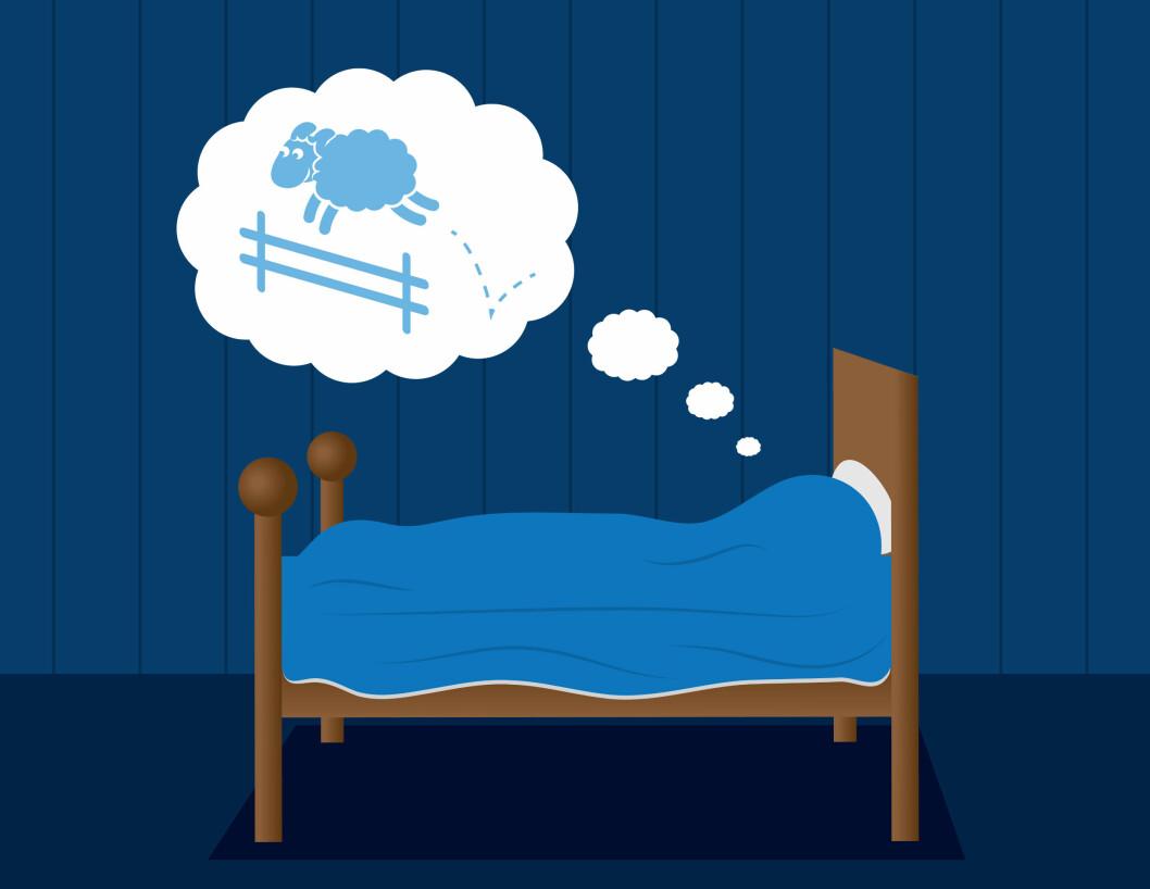 IKKE SÅ DUMT: Tell sauer. Det å gjøre noe som ikke krever så mye av hjernen din får tankene til å vandre bort fra bekymringene ii hverdagen. Da blir det raskt letter å få sove.  Foto: milo827 - Fotolia