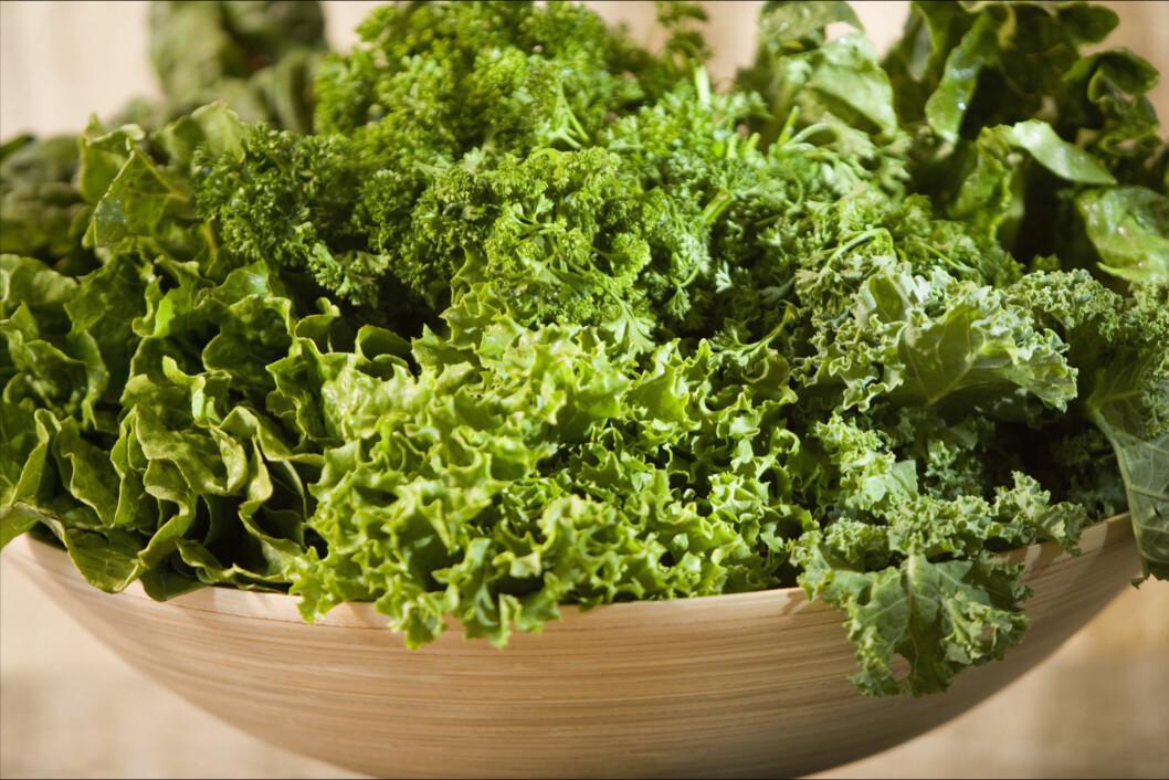 PROPPFULL: Grønnkål er proppfullt av viktige vitaminer og mineraler, og kan blant annet forebygge kreft. Foto: Thinkstock.com