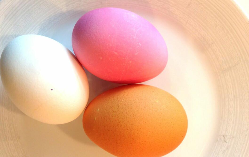 FARGERIK FROKOST: Frokost er en viktig del av påsken. Farg eggene dine ved å bruke løkskall eller kondittorfarge. Foto: Silje Ulveseth