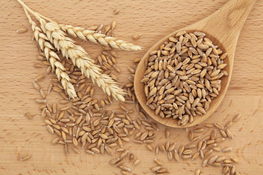FULLKORN: Fullkornslefser gir mer fiber og bidrar med mer mineraler og vitaminer enn de fine typene.  Foto: marilyn barbone - Fotolia