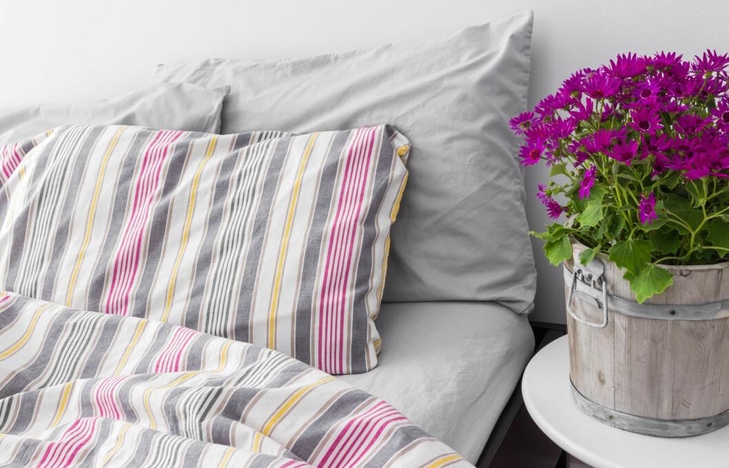 SENGETØY: Hva bør du velge? Ifølge ekspertene er det mye som påvirker hvor mykt og godt sengetøyet er, og det er enkelte begreper som kan være lurt å kjenne til.  Foto: GoodMood Photo - Fotolia