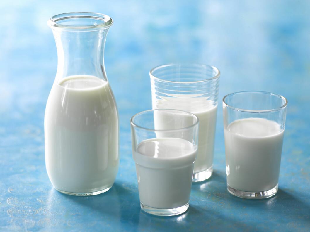 IKKE FAN? Hvis du ikke er så glad i melk, eller meieriprodukter, kan teff-frø være et godt alternativ, ettersom frøene inneholder masse kalsium.  Foto: Fotolia