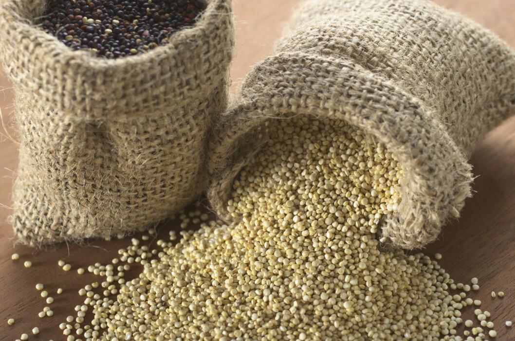 """QUINOA: Frøene er sagt å være den nye """"quinoaen"""", som slett ikke er så verst med tanke på hvor mye skryt korntypen har fått.  Foto: Getty Images/iStockphoto"""