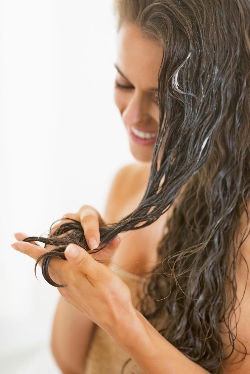 TUPPENE: Husk at håret er mest slitt i tuppene, så både kuren og balsamen bør påføres her, ikke nær hodebunnen.  Foto: Alliance - Fotolia