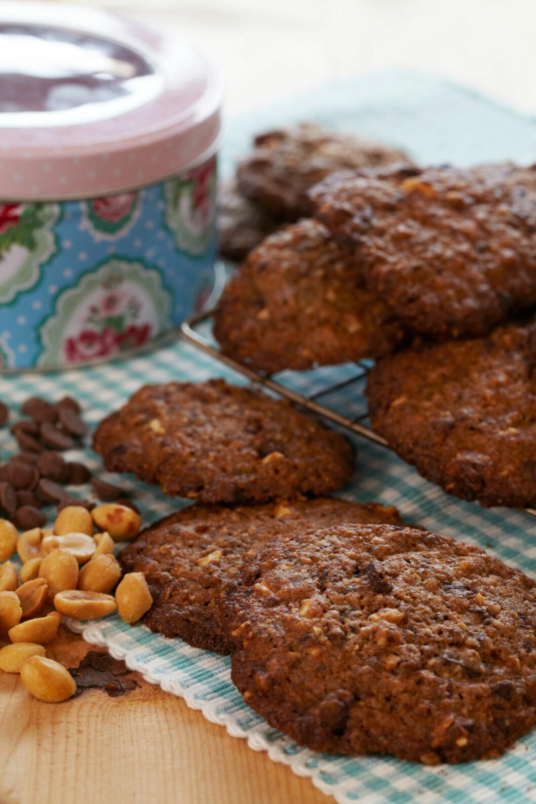 Cookies in a jar Foto: Synøve Dreyer