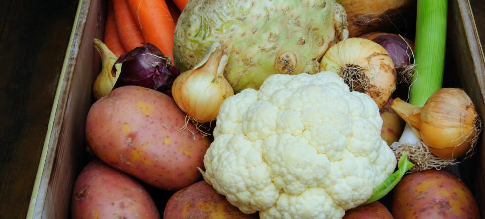 De beste vintergrønnsakene