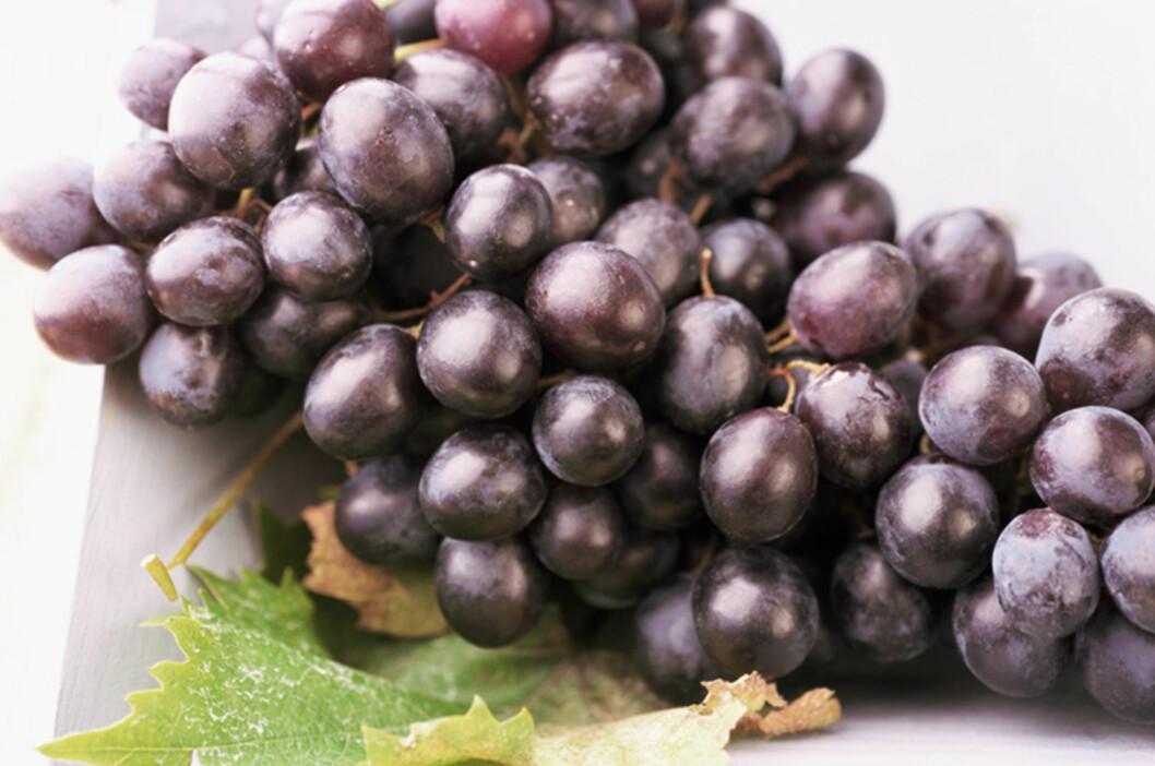 DRUER: Antioksidanten resveratrol ligger i drueskallet.  Foto: Colourbox.com