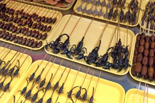 <strong>SOM MAT:</strong> Det finnes stedet i verden der insekter regnes som delikatesser.  Foto: Delphimages - Fotolia