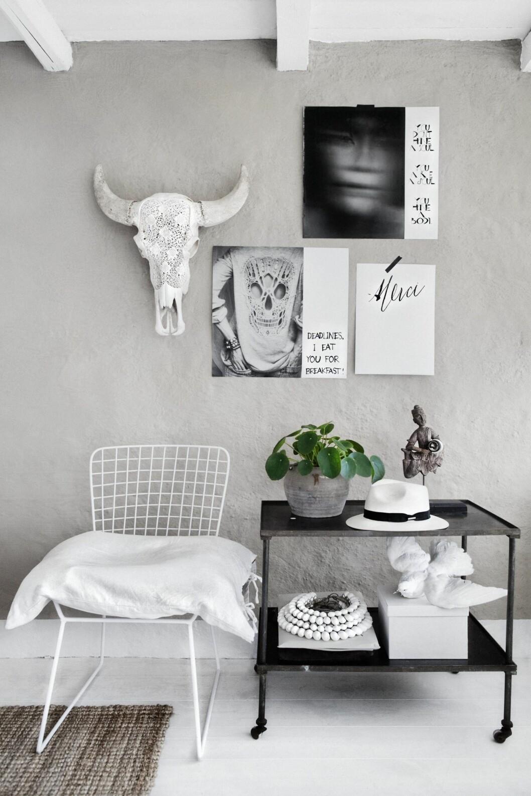 <strong>RESULTATET:</strong> Slik ser det ut når bildene er satt sammen til et moodboard på veggen. Foto: Hannah Lemholt