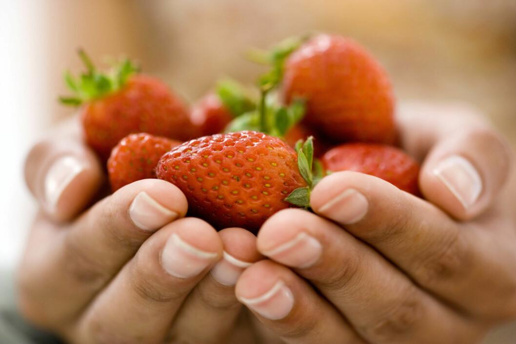 GÅ FOR JORDBÆR: Jordbær på sommeren kan aldri slå feil. Sammen med epler og paideig finnes det virkelig ikke noe bedre! Foto: Getty Images/Pixland