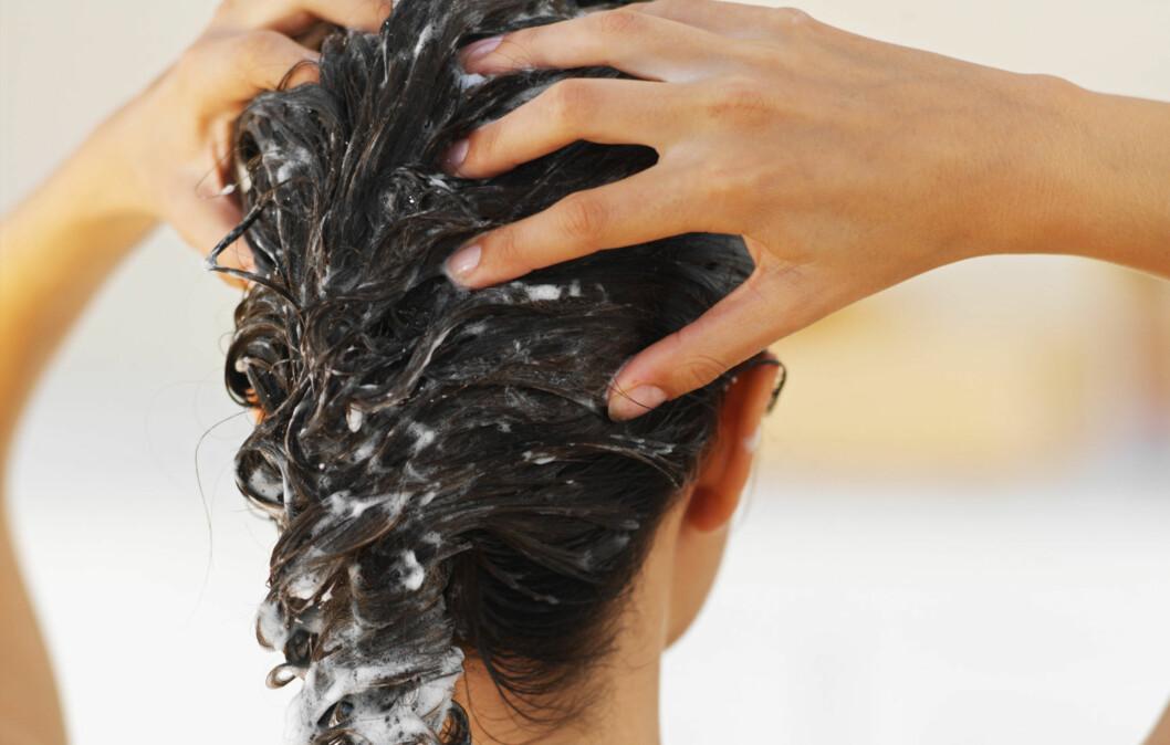 KUR FOR ALL TYPER – OG TYPEN: Du bør alltid vurdere både hårtypen og hvordan du behandler håret kjemisk og mekanisk før du velger hårkur.  Foto: Getty Images