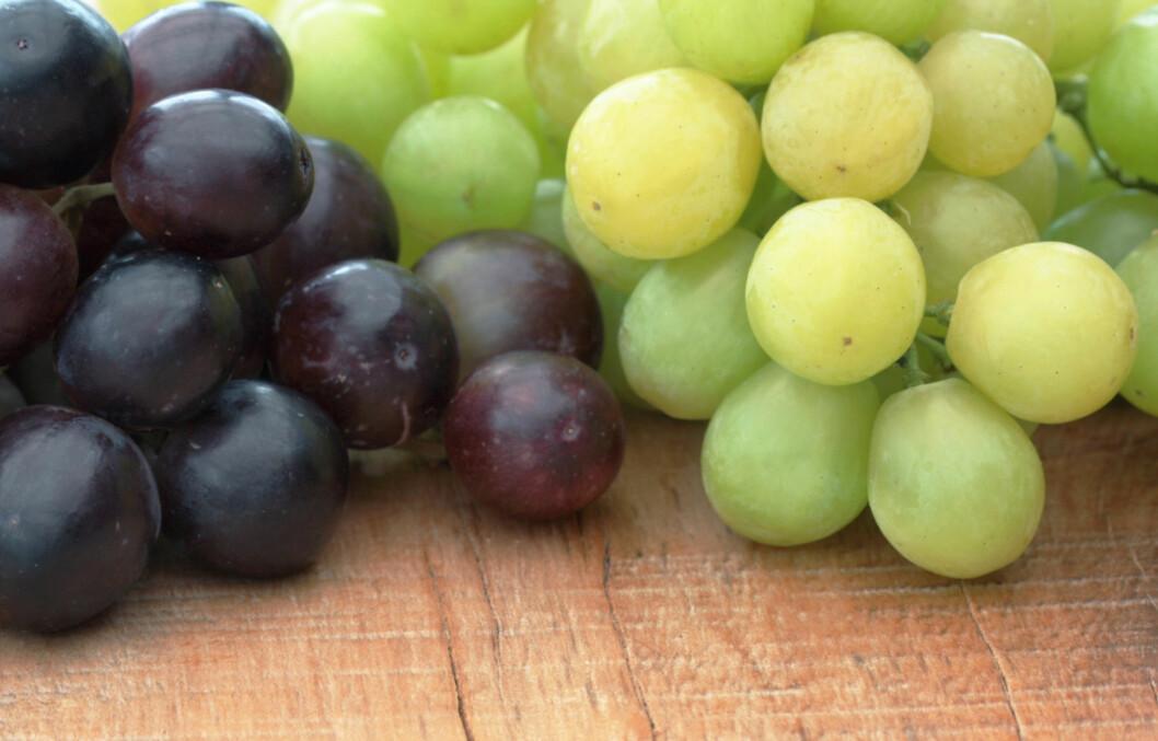 GÅ FOR DE BLÅ DRUENE: Hvis du opplever svingninger i blodsukkeret eller passer på vekten, kan det være lurt å velge blå druer, ettersom de inneholder mindre sukker enn de grønne.  Foto: Thinkstock.com