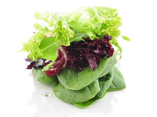 FIN MIKS: Bland gjerne flere salattyper for å gjøre smaken mer spennende.Her ser du Grøn og rød lollo og spinat. Den grønne lolloen er minst sunn. Foto: Colurbox