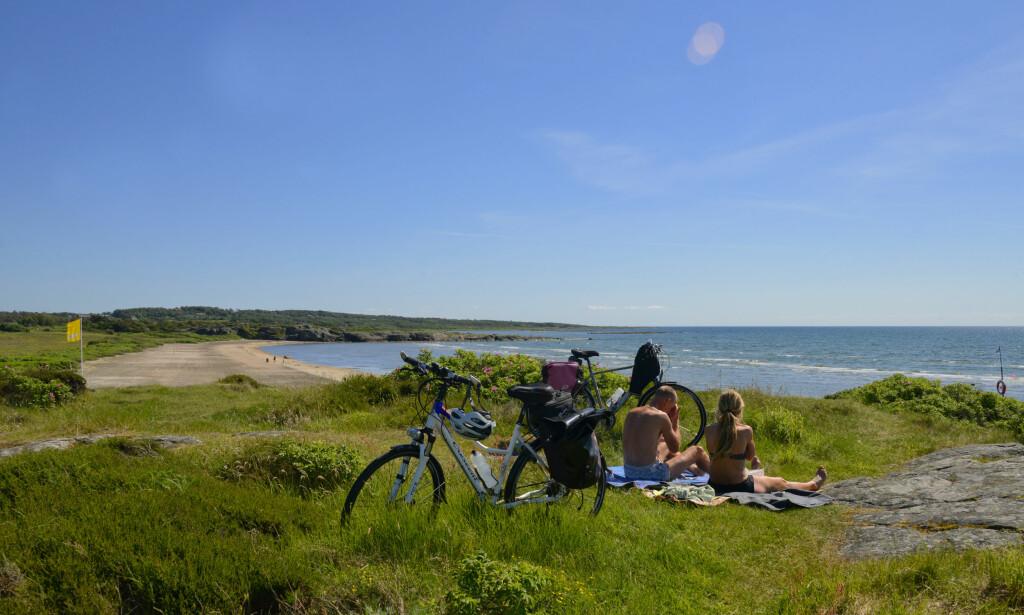 EN PUST I BAKKEN: Sykler dere Kattegattleden, kommer dere over mange sjarmerende små steder hvor det er perfekt å ta en piknik. Foto: Adde region Halland