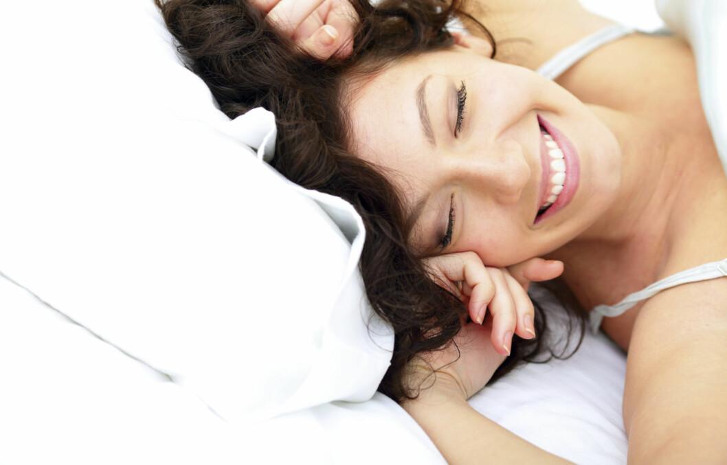 SOYORA, SQUEEL OG STUBBY: Tre gode grunner til at du gjerne holder senga i jula. Foto: Thinkstock