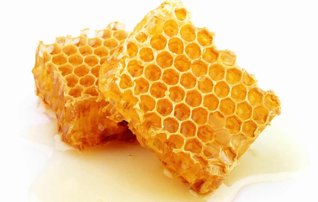 PRØV HONNING: Honning fungerer like bra som hostesaft, forteller Harley Rotbart til Health.com. Foto: Colourbox.com