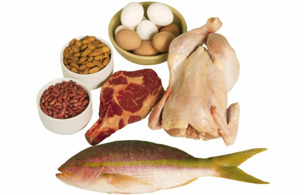 VIKTIG NÆRINGSSTOFF: Blant matvarene som er rike på protein er fisk, kjøtt, melk, ost og egg. Vegetabilske matvarer som korn, bønner og nøtter er også viktige proteinkilder.  Foto: Getty Images/Comstock Images