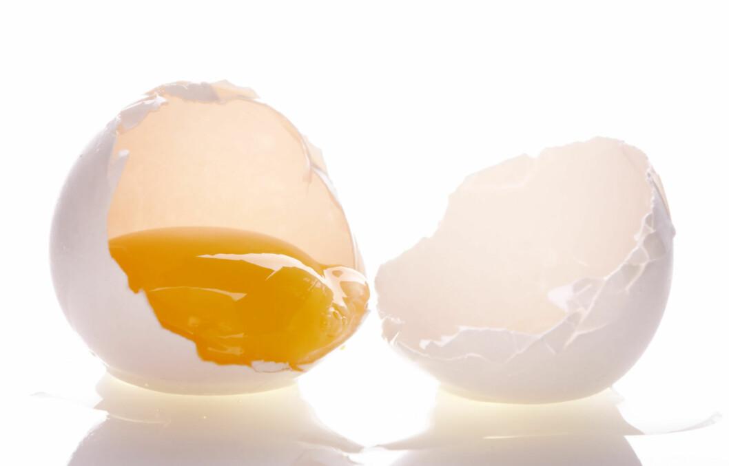 <strong>KJØR FULL PAKKE:</strong> Å kutte ut eggeplommen ikke har noe for seg, sier ernæringsekspert Mike Roussell. Foto: Thinkstock