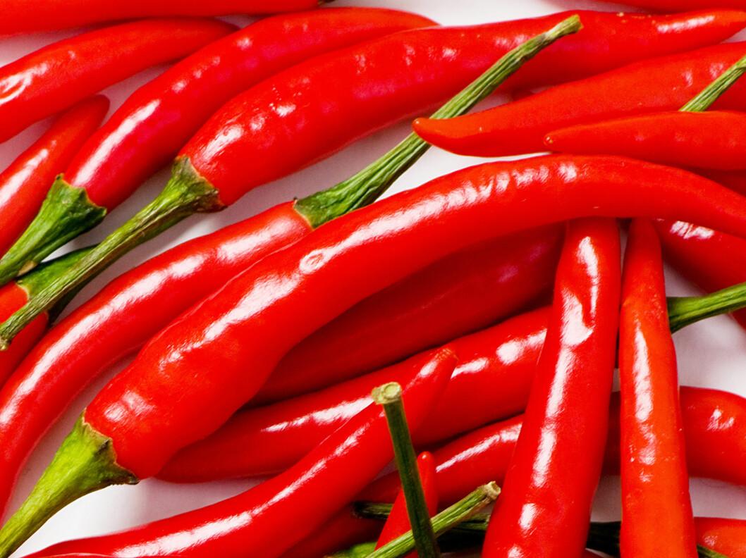 <strong>HJELPER MOT TETT NESE:</strong> Den aktive ingrediensen i chili, capsaicin, kan hjelpe til med å fikse visse typer bihulebetennelse. Foto: Colourbox.com