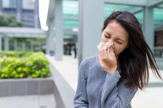 POLLEN VERSUS FORKJØLELSE: Symptomer som ligner på pollen, slik som rennende og/eller tett nese, slapphet og trøtthet kan også ligne på forkjølelse. Derfor kan det være lett å mistolke slike symptomer i begge retninger. Foto: NTB scanpix