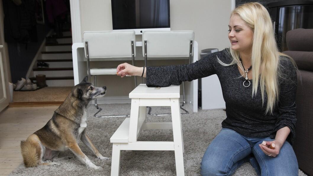 <strong>HUNDEMAMMA:</strong> – Å adoptere Amy har vært helt fantastisk, og hun har lært meg så mye om kjærlighet, sier Trine, som jobber som hundeinstruktør. Foto: Sverre Chr. Jarild