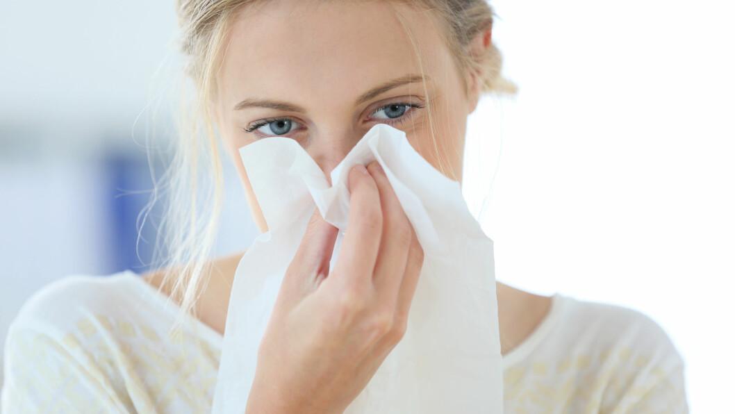 POLLENALLERGI: Hvis forkjølelsen aldri ser ut til å gi seg så er det ikke sikkert at du egentlig er forkjøla – det kan faktisk være at du har pollenallergi. Foto: Shutterstock / goodluz