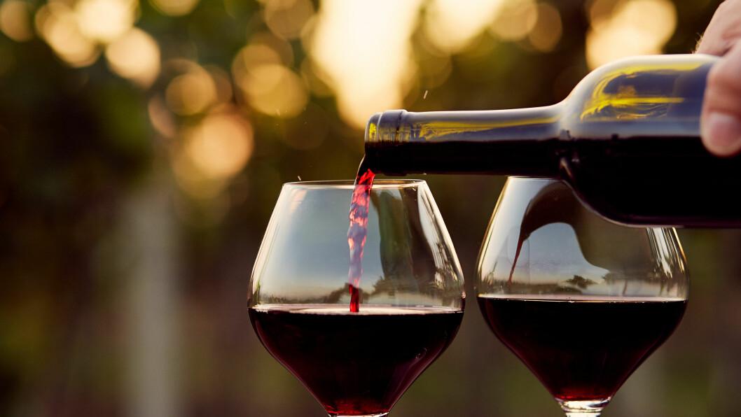 MYTER OM VIN: Vinekspertene gir deg svaret på seks av de vanligste mytene rundt vin og vindrikking. Foto: Shutterstock / Rostislav_Sedlacek