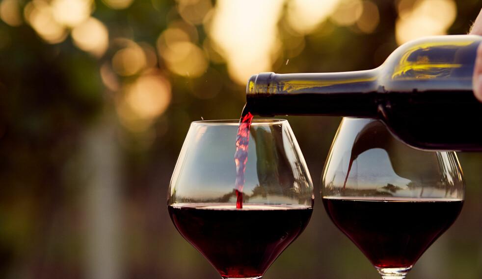 <strong>MYTER OM VIN:</strong> Vinekspertene gir deg svaret på seks av de vanligste mytene rundt vin og vindrikking. Foto: Shutterstock / Rostislav_Sedlacek