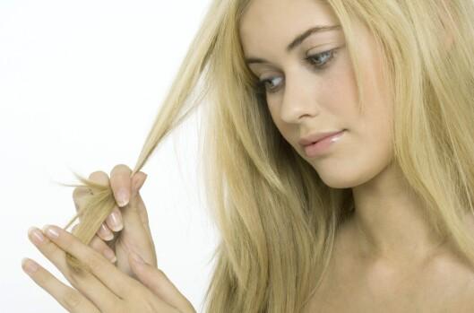 Mens du beundrer det nystripede håret ditt legger du kanskje ikke en gang merke til at din bedre halvdel har benyttet anledningen til å skaffe seg en iPhone (så er dere skuls). Foto: colourbox.com